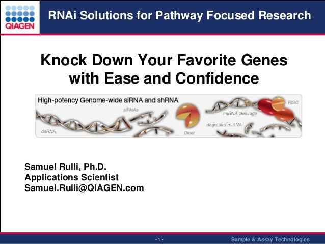RNAi Solutions for Pathway Focused Research  Knock Down Your Favorite Genes with Ease and Confidence  Samuel Rulli, Ph.D. ...