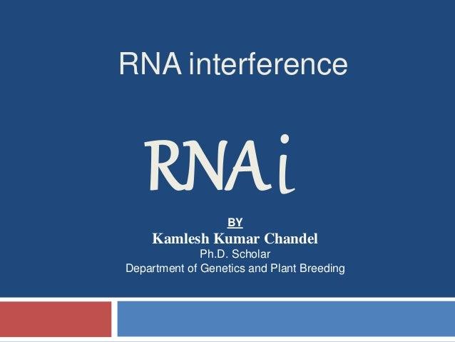 RNA interference  RNAi  BY  Kamlesh Kumar Chandel  Ph.D. Scholar  Department of Genetics and Plant Breeding