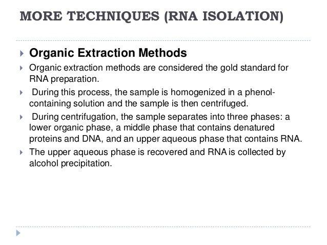rna extraction in liquid nitrogen 14