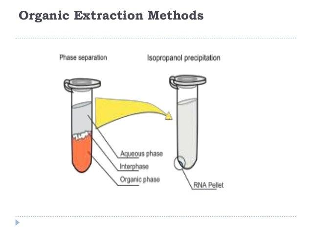 15 organic extraction