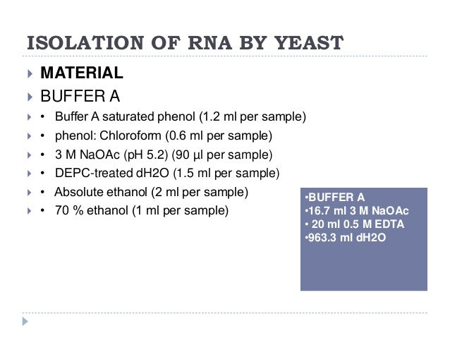 isolation of yeast rna The presto™ mini gdna yeast kit was designed for rapid isolation of genomic dna from cultured yeast and other fungus species the yeast/fungus cells are directly added into beadbeating tubes containing ceramic beads and lysis buffer.