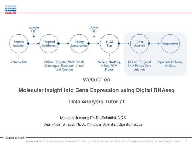 Molecular insight into Gene Expression Using Digital RNAseq