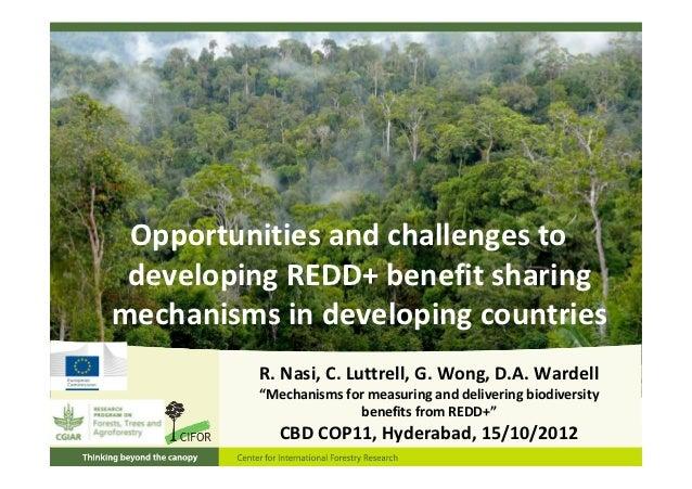 Opportunitiesandchallengesto developingREDD+benefitsharingmechanismsindevelopingcountries          R.Nasi,C.Lu...