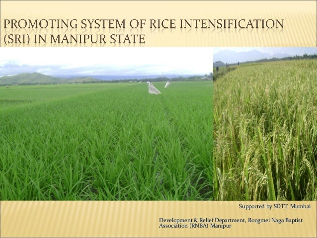 Supported by SDTT, MumbaiDevelopment & Relief Department, Rongmei Naga BaptistAssociation (RNBA) Manipur