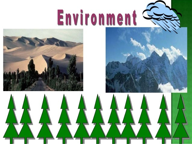  AirPollution :- Is defined as contamination of  hazardous gases which is released in the air,  which disturbs natural co...