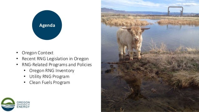 10 • Oregon Context • Recent RNG Legislation in Oregon • RNG-Related Programs and Policies • Oregon RNG Inventory • Utilit...