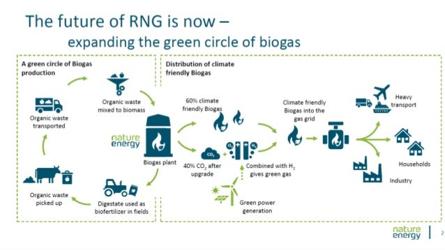 The Danish RNG Model Biogas integrated part of a circular economy Co-digestion of manure and food waste Economy of scale: ...