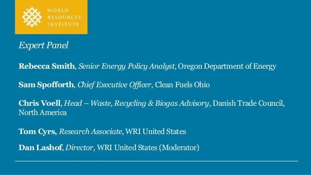 A special thanks to UPS Foundation and WRI RNG Working Group Members Read the Renewable Natural Gas as a Climate Strategy:...