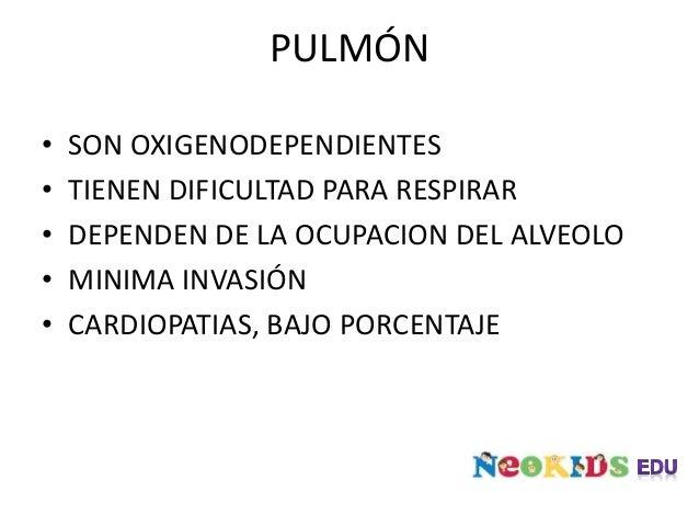 PULMÓN SILVERMAN ANDERSEN