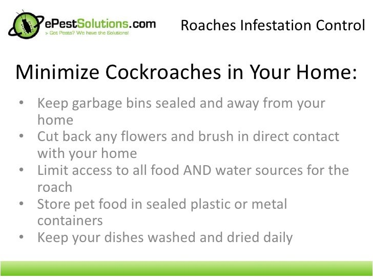 How do you keep roaches away?
