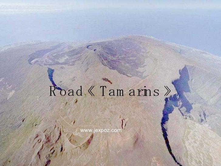 Road «Tamarins» www.jexpoz.com