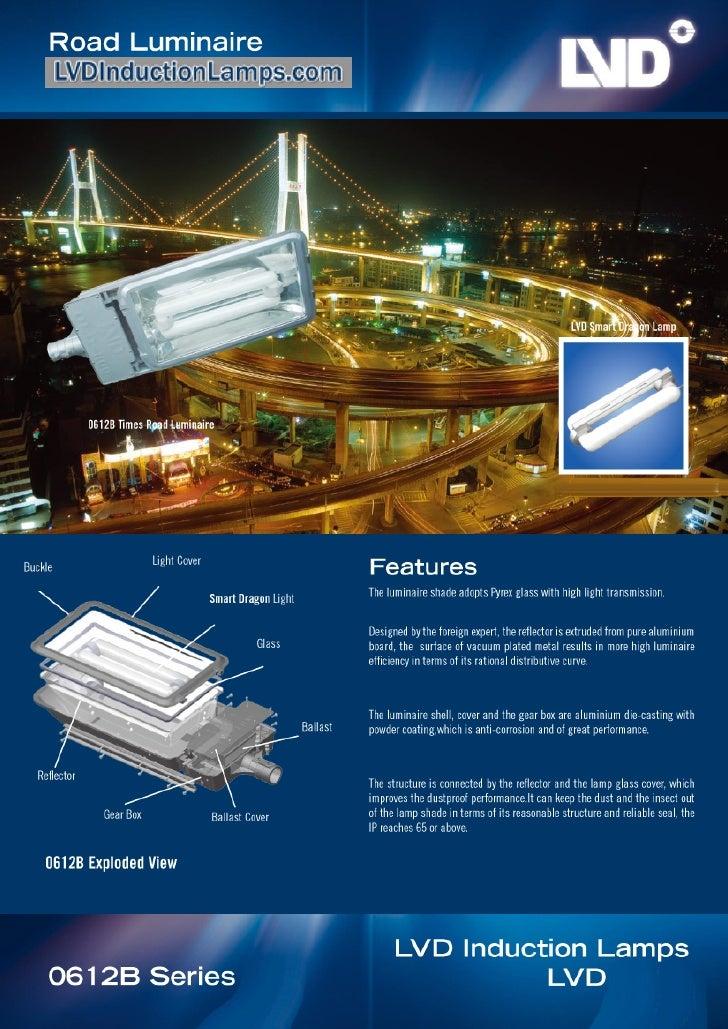 www.lvdinductionlamps.com