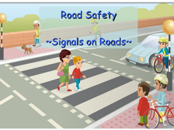 Road Safety ~Signals on Roads~