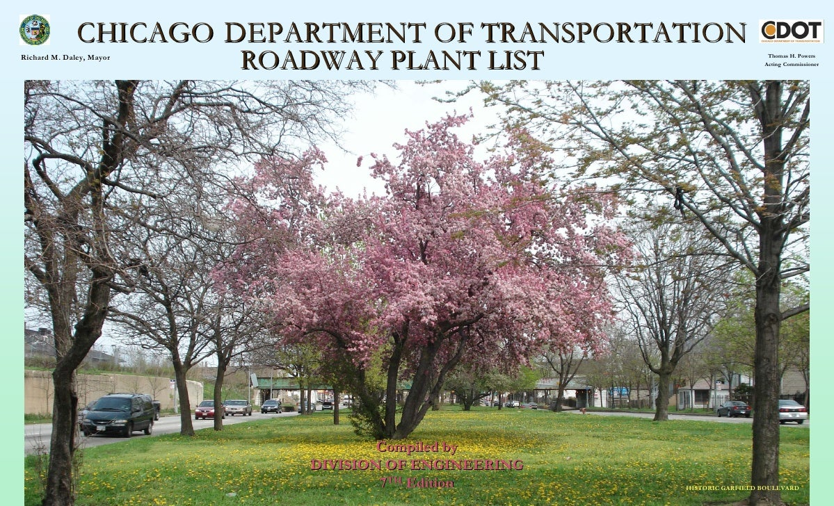 CHICAGO DEPARTMENT OF TRANSPORTATION Richard M. Daley, Mayor                           ROADWAY PLANT LIST                 ...
