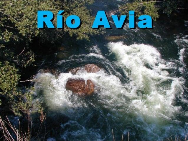 Río AviaRío Avia