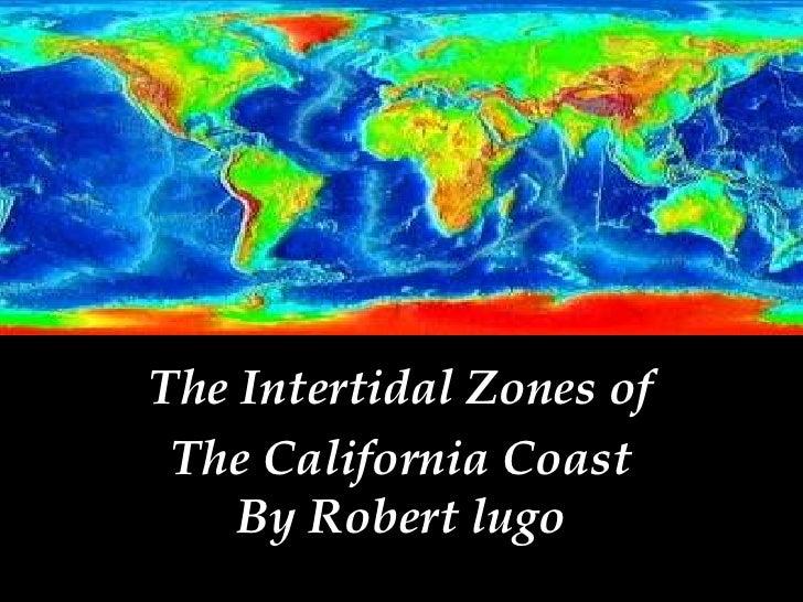 The Intertidal Zones of<br />The California CoastBy Robert lugo<br />