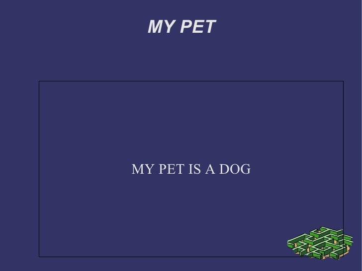 MY PET MY PET IS A DOG