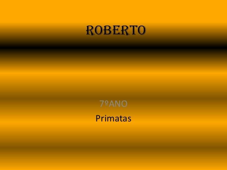 Roberto<br />7ºANO<br />Primatas<br />