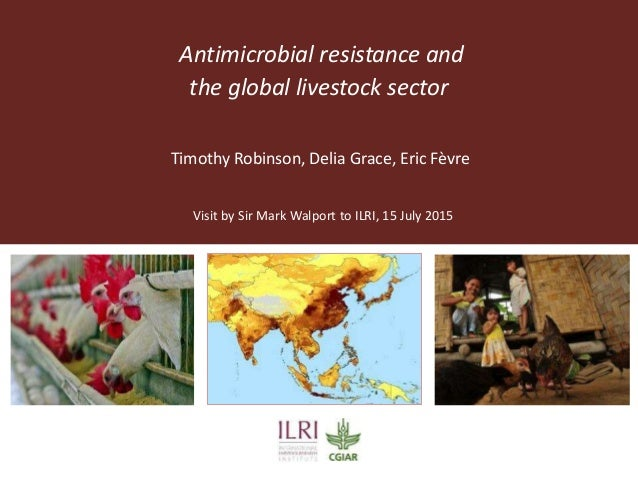 Antimicrobial resistance and the global livestock sector Visit by Sir Mark Walport to ILRI, 15 July 2015 Timothy Robinson,...