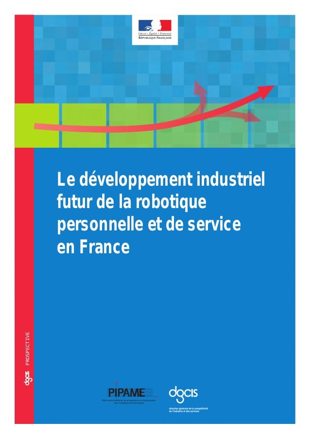 ccoprospective Le développement industriel futur de la robotique personnelle et de service en France