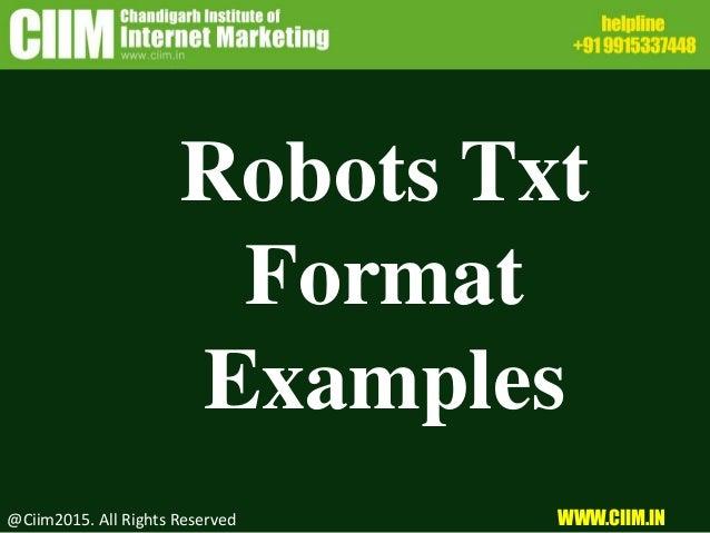 Robots Txt Format Examples