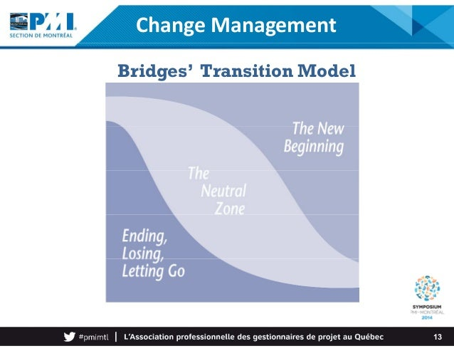 Transitions and their effect on development Essay