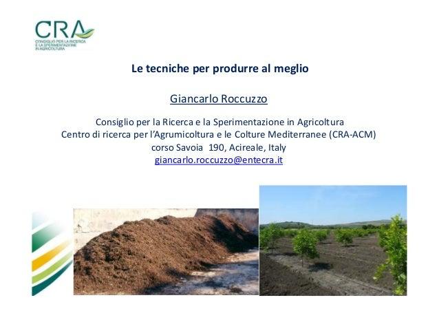 Le tecniche per produrre al meglio Giancarlo Roccuzzo Consiglio per la Ricerca e la Sperimentazione in Agricoltura Centro ...