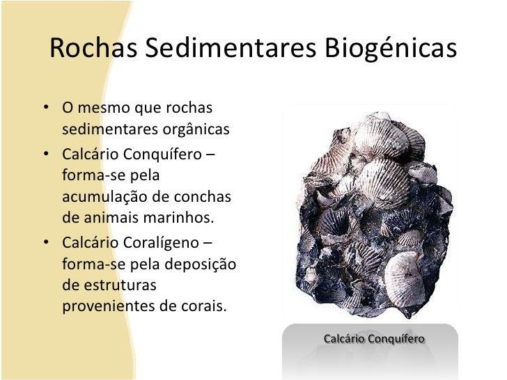 Rochas Sedimentares Biogénicas<br />O mesmo que rochas sedimentares orgânicas<br />Calcário Conquífero – forma-se pela acu...