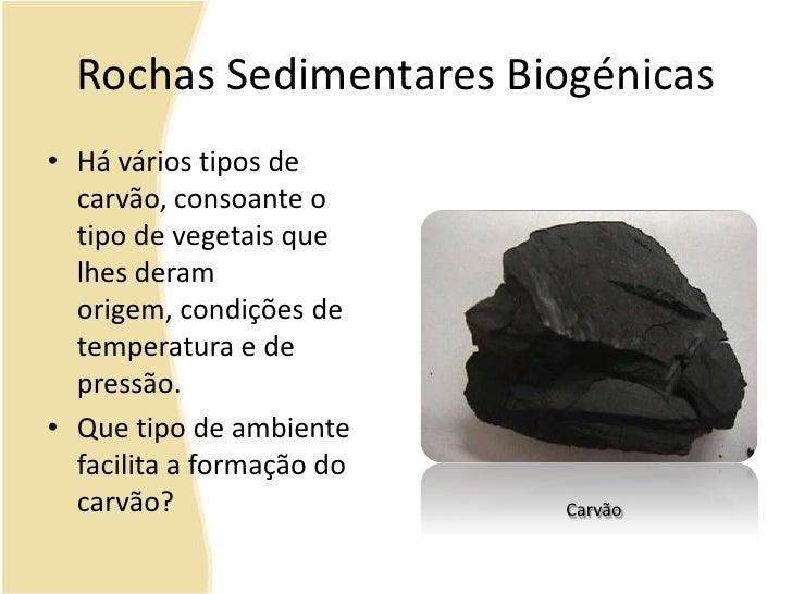 Rochas Sedimentares Biogénicas<br />Há vários tipos de carvão, consoante o tipo de vegetais que lhes deram origem, condiçõ...