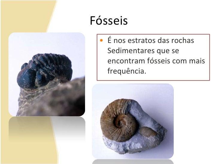 Fósseis<br /><ul><li>É nos estratos das rochas Sedimentares que se encontram fósseis com mais frequência.</li></li></ul><l...