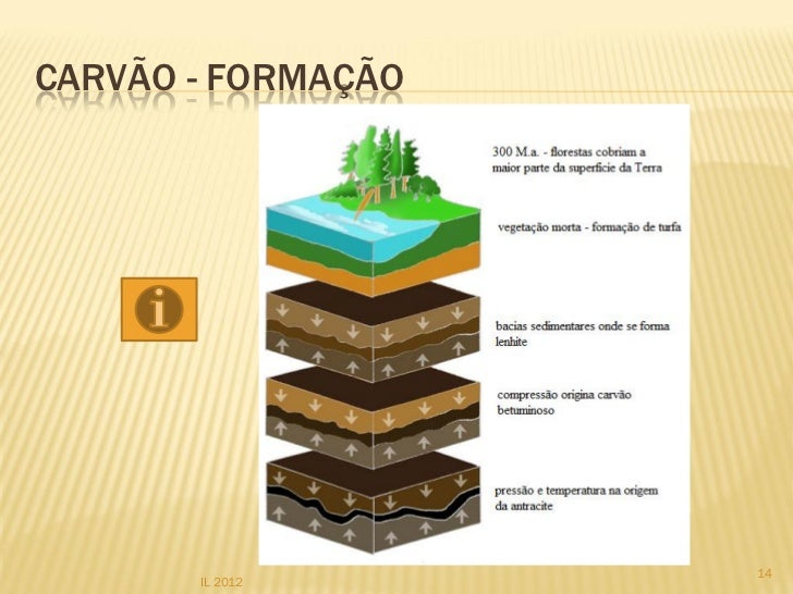 I Formação Dos Coroinhas: Rochas Sedimentares Classificação Biogénicas