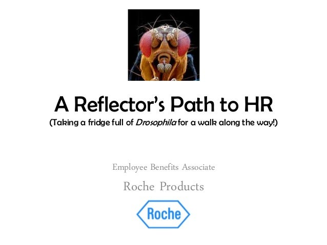A Reflector's Path to HR (Taking a fridge full of Drosophila for a walk along the way!) Employee Benefits Associate Roche ...
