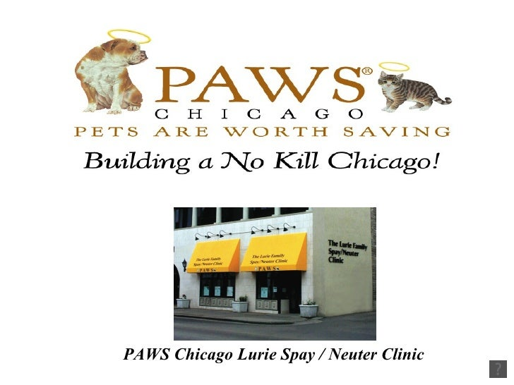 PAWS Chicago Lurie Spay / Neuter Clinic