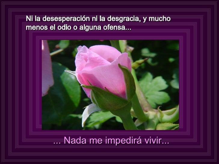 Ni la desesperación ni la desgracia, y mucho menos el odio o alguna ofensa... ... Nada me impedirá vivir...
