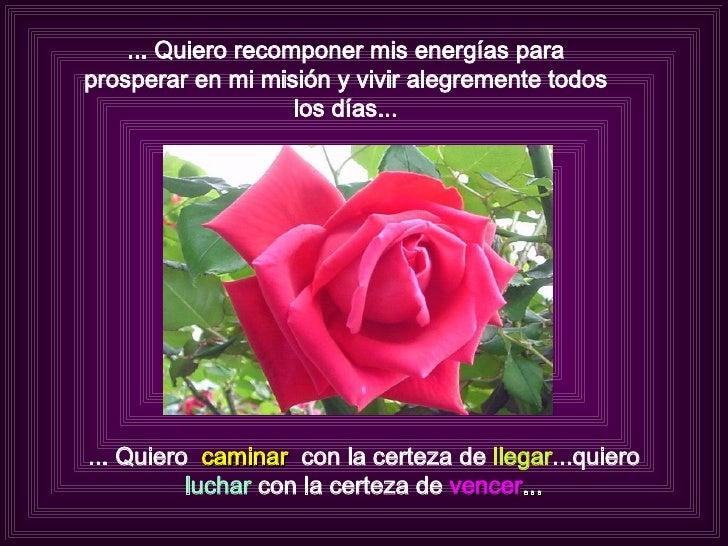 ... Quiero recomponer mis energías para prosperar en mi misión y vivir alegremente todos los días... ... Quiero  caminar  ...