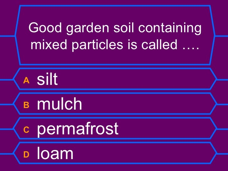 Rocks and soils quiz for Soil questions