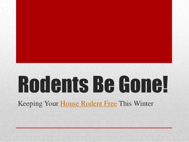 Rodents be gone keeping your house rodent free this winter - What temperature to keep house in winter when gone ...