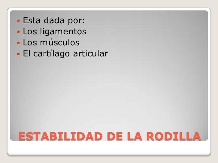 ESTABILIDAD DE LA RODILLA<br />Esta dada por:<br />Los ligamentos<br />Los músculos <br />El cartílago articular<br />