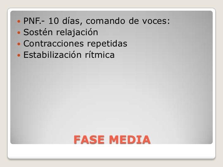 FASE MEDIA<br />PNF.- 10 días, comando de voces:<br />Sostén relajación<br />Contracciones repetidas<br />Estabilización r...