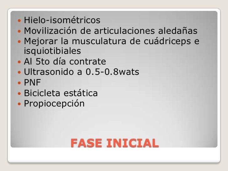 FASE INICIAL<br />Hielo-isométricos<br />Movilización de articulaciones aledañas<br />Mejorar la musculatura de cuádriceps...