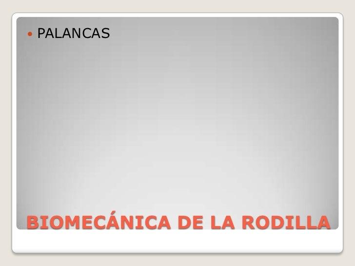 BIOMECÁNICA DE LA RODILLA<br />PALANCAS<br />