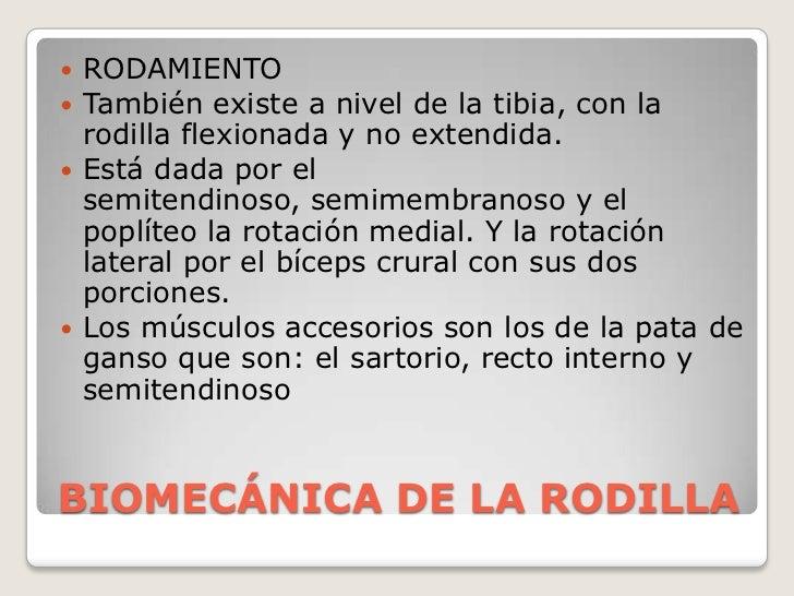 BIOMECÁNICA DE LA RODILLA<br />RODAMIENTO<br />También existe a nivel de la tibia, con la rodilla flexionada y no extendid...
