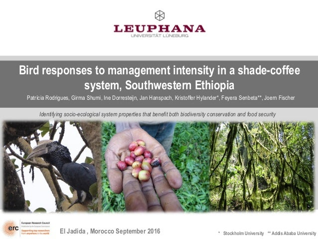 Bird responses to management intensity in a shade-coffee system, Southwestern Ethiopia Patrícia Rodrigues, Girma Shumi, In...