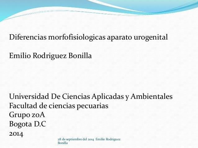 Diferencias morfofisiologicas aparato urogenital  Emilio Rodriguez Bonilla  Universidad De Ciencias Aplicadas y Ambientale...