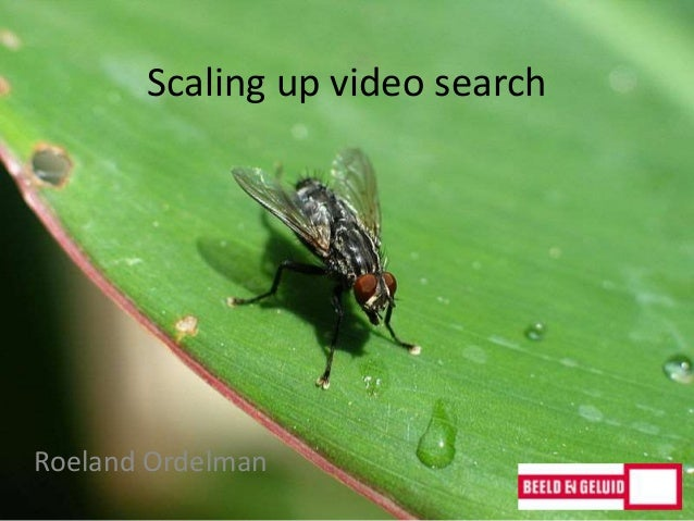 Scaling up video search Roeland Ordelman