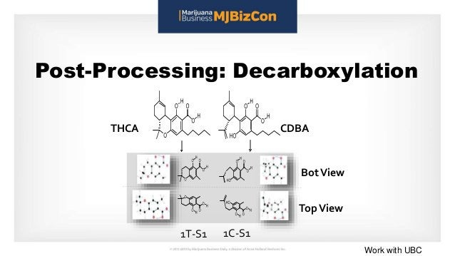 Post-Processing: Decarboxylation 1T-S1 1C-S1 BotView THCA CDBA TopView Work with UBC