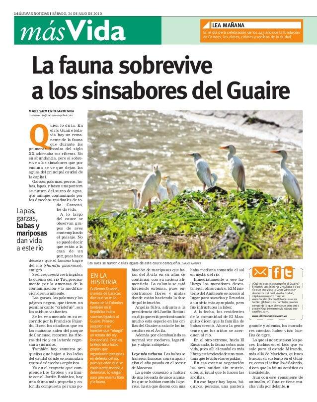 16 ÚLTIMAS NOTICIAS ❙ SÁBADO, 24 DE JULIO DE 2010 másVida grande y, además, los morado- res cuentan haber visto hue- llas ...