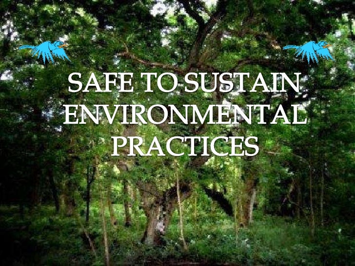 SAFE TO SUSTAIN<br />ENVIRONMENTAL<br />PRACTICES<br />