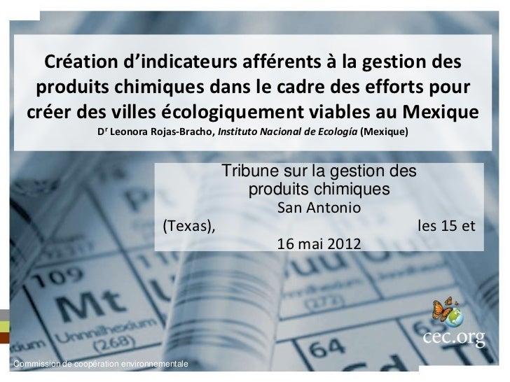 Création d'indicateurs afférents à la gestion des    produits chimiques dans le cadre des efforts pour   créer des villes ...