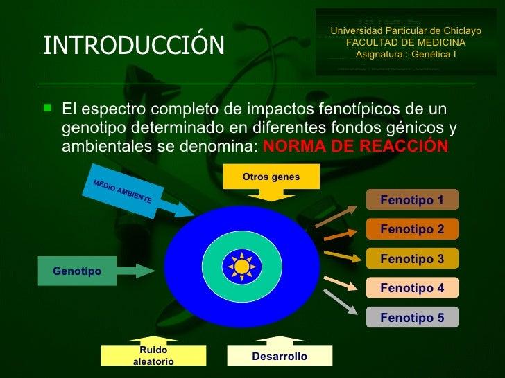 <ul><li>El espectro completo de impactos fenotípicos de un genotipo determinado en diferentes fondos génicos y ambientales...